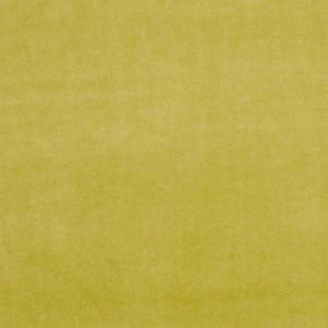 Upholstery Supplies Olive