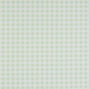 Dress Fabric mint gingham
